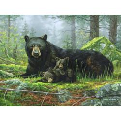 Black Bear Tempered Glass Kitchen Board 1