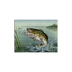 Large Mouth Bass Tempered Glass Kitchen Board 1