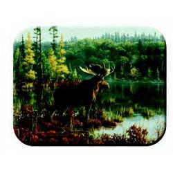 Moose in the Wild Kitchen Board 1
